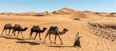 Foto de la semana: Desierto del Sahara